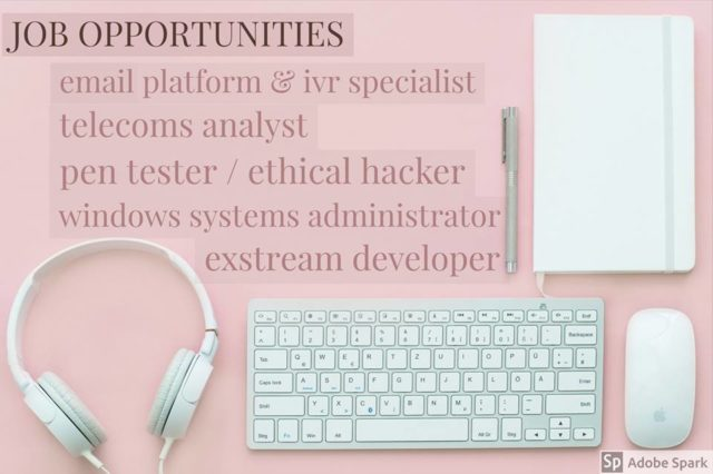 Telecoms Analyst / Ethical Hacker / Exstream Developer / Windows System Administrator